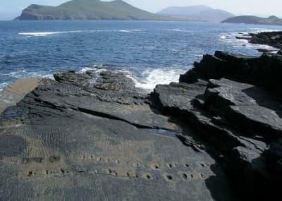 valentia-island-kerry-tetrapod-fossil-tracks